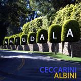 CD Amigdala